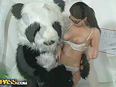 Panda's such a bad student! His teacher is very unhappy, panda didn't even do his homework. After a while the sexy teacher decided to give up maths and teach panda bear another lesson. Her big assortment of kinky sex toys is really impressive, and the filthy chick knows how to use them. However, none of her fun sex toys is as big and arousing as panda bear's huge strapon. After a steamy and fun fucking session the strict teacher is finally happy with her student. Good job, panda bear, fucking A!...