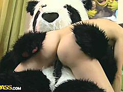 What do nasty teenage girls do when they're home alone and bored? They get naked and play with sex toys! But this isn't simply a masturbation video, because the oversexed chick got her panda bear involved in her xxx sex play. She sucked the panda bear off, and he let the horny cutie ride his big black strapon. The busty teenage took the thick dildo real deep in, moving faster and faster. The panda bear obviously knows how to please a girl, and I bet she'll want to repeat this strapon sex again and again!